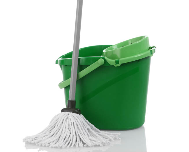 House cleaning mop and container